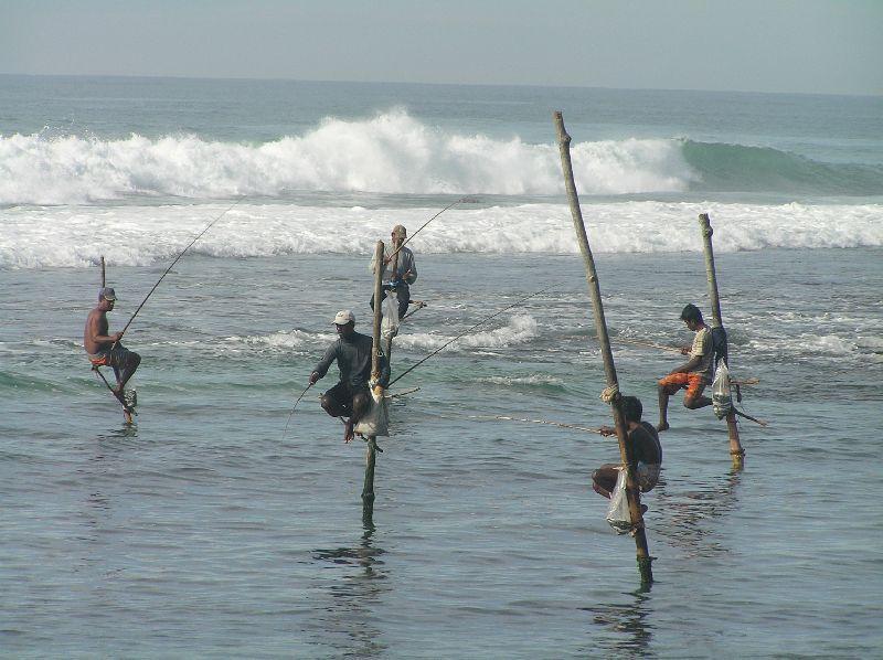 stickfishing