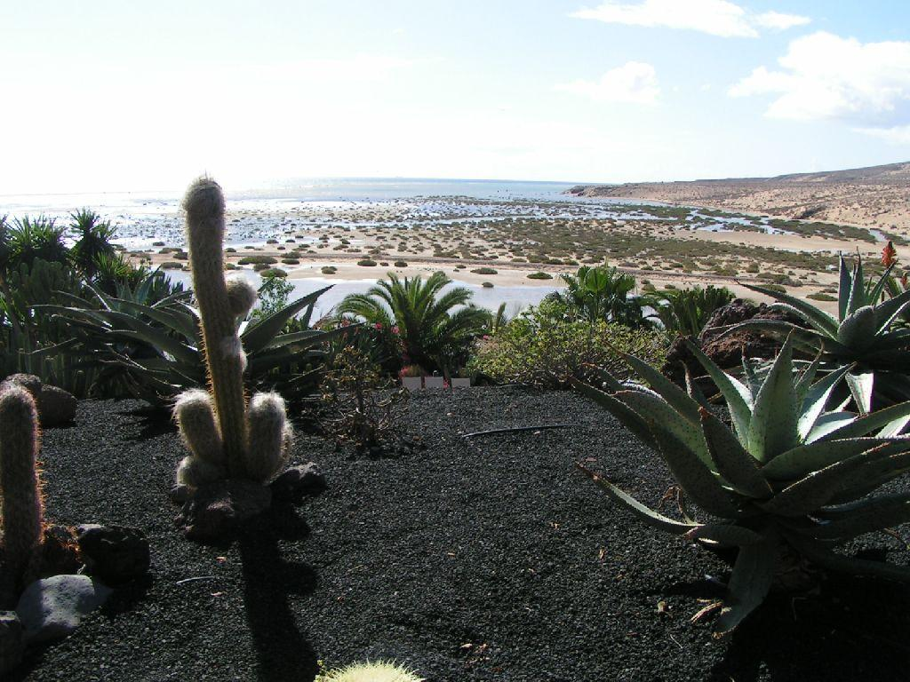 Fuerteventura 07